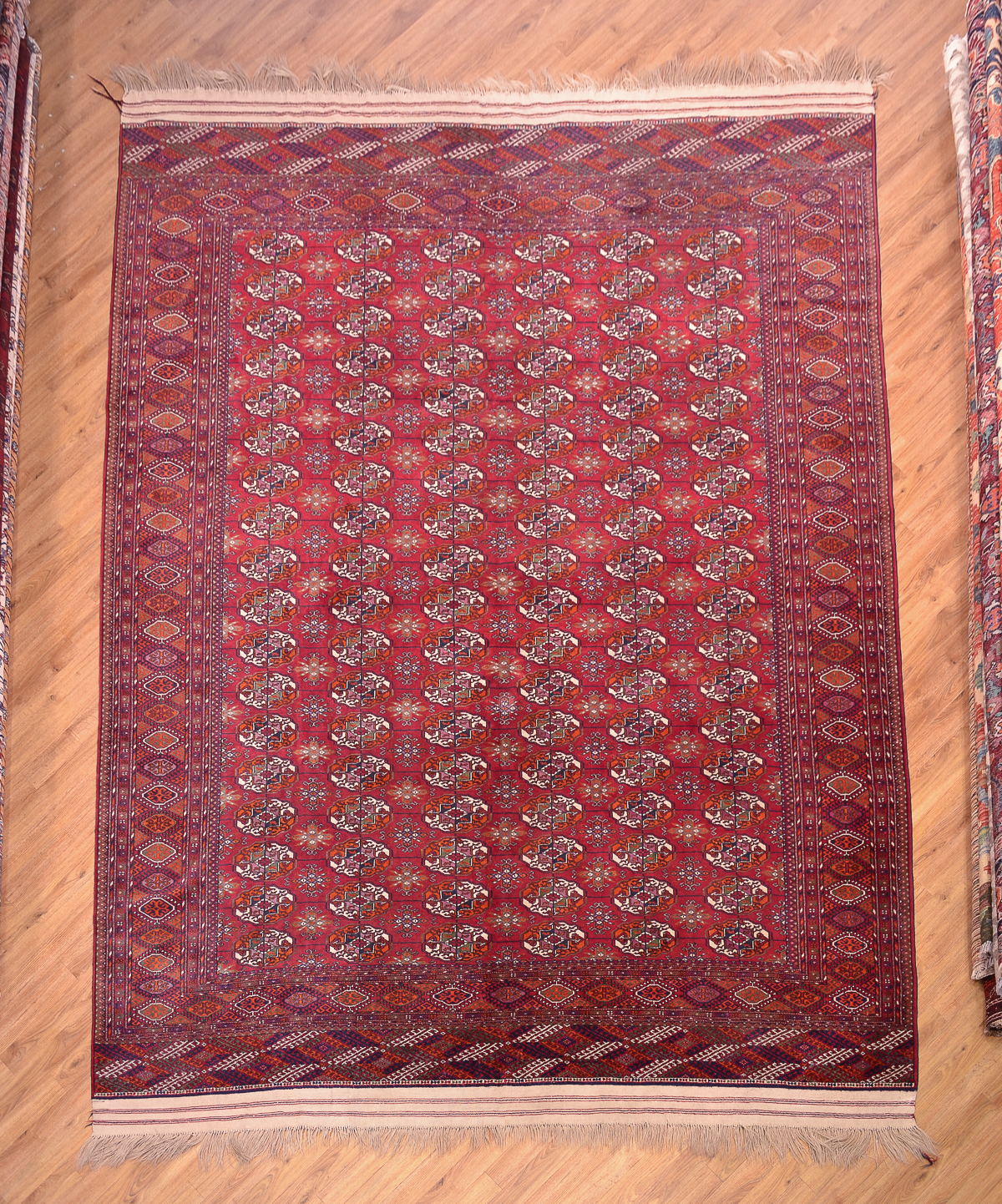 Fine Large Turkoman Bokhara Carpet The Oriental Rug Merchant